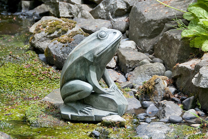 Barry Frog, stained concrete animal for outdoor garden or patio