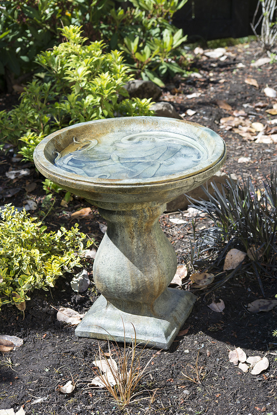 Dragonfly Bird bath concrete, outdoor, patio, garden