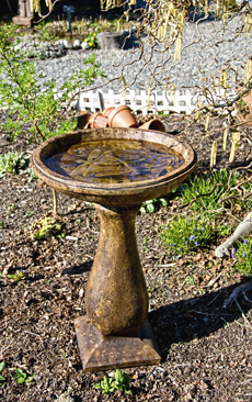 Dragonfly Birdbath Tall acid stained concrete bird bath for garden or patio