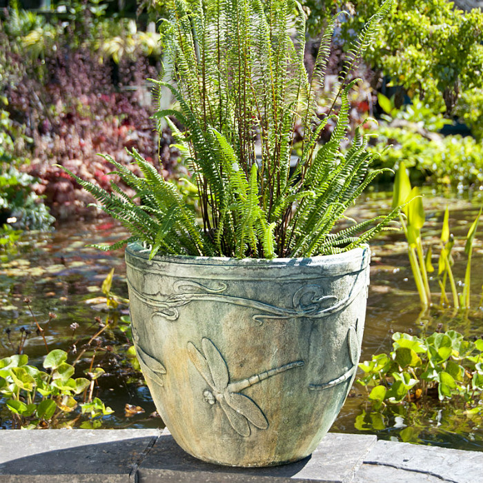 Dragonfly Pot patio
