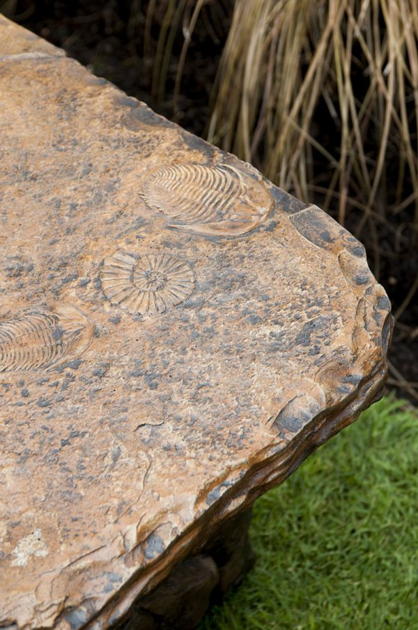Fossil Bench, stained concrete bench for outdoor garden or patio