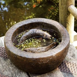 Koi Bowl, stained concrete bird bath for outdoor garden or patio