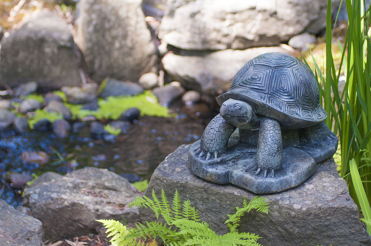 Leonard, stained concrete turtle for outdoor garden or patio