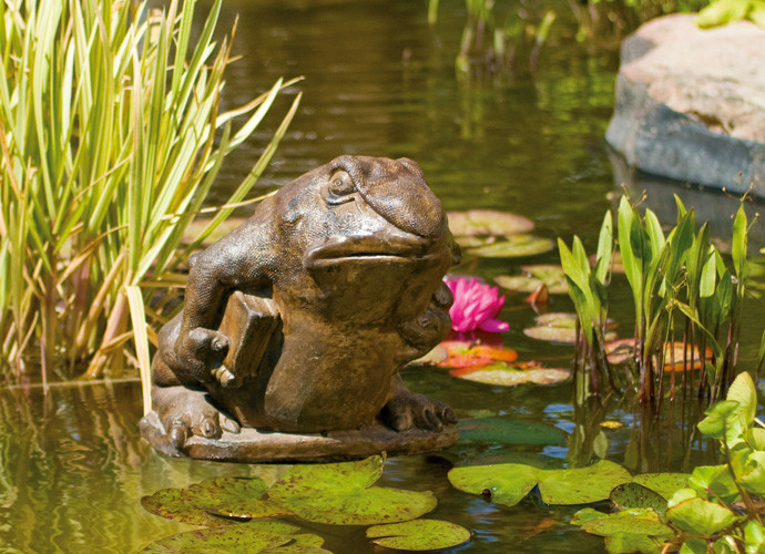 Professor Frog, stained concrete animal for outdoor garden or patio