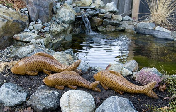 Swimming Koi - Large, Medium & Small concrete fish for garden pond