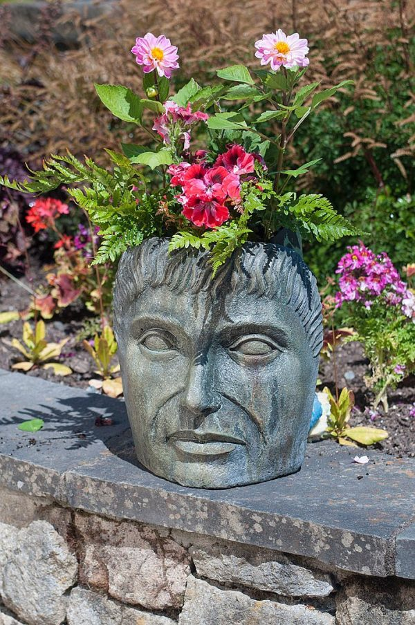 Swap a Pots - Tabletop Young Emperor, stained concrete planters for outdoor garden or patio
