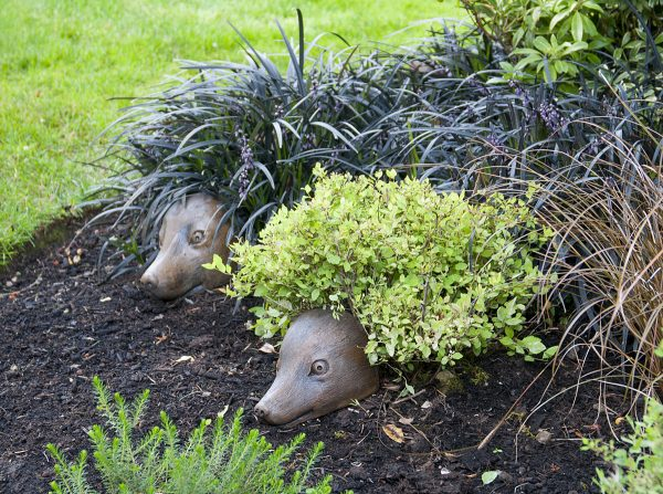 Heather Hog, cute stained concrete statue for outdoor garden or patio